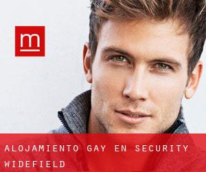 Alojamiento Gay en Security-Widefield