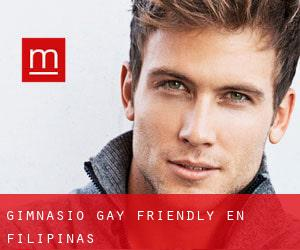 Gimnasio Gay Friendly en Filipinas