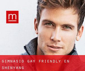 Gimnasio Gay Friendly en Shenyang