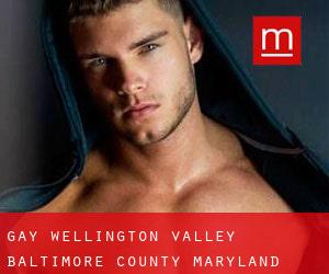 gay Wellington Valley (Baltimore County, Maryland)